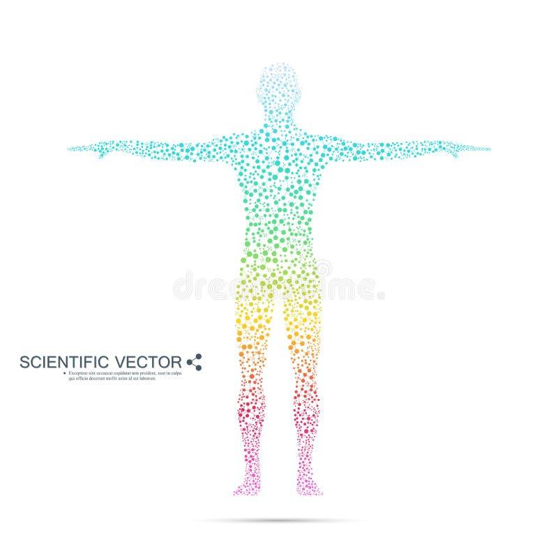 Struktury molekuła mężczyzna Abstrakcjonistycznego modela ciała ludzkiego DNA Medycyna, nauka i technika Naukowy wektor dla twój royalty ilustracja
