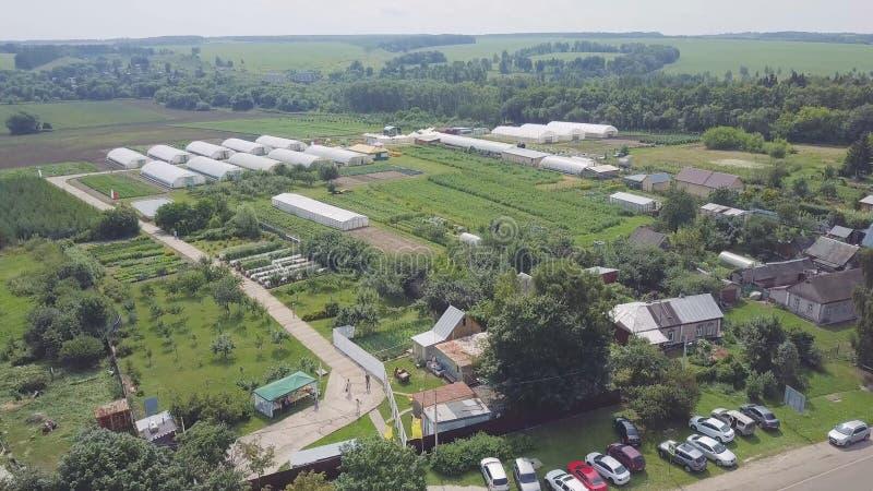 Struktury szklarnie, odgórny widok klamerka Budowa szklarnie w polu Rolnictwo, agrotechnics zamknięty obrazy royalty free