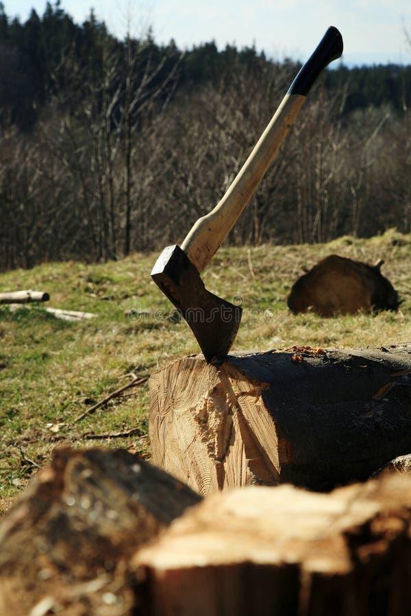 Strumentazione del boscaiolo - ascia fotografia stock libera da diritti