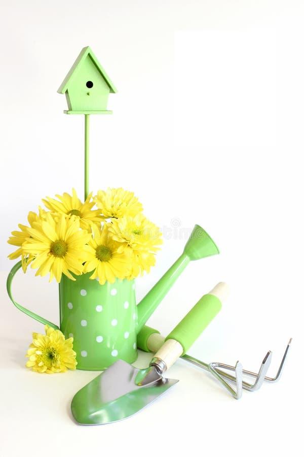 Strumenti di giardinaggio verdi con i fiori gialli fotografia stock libera da diritti