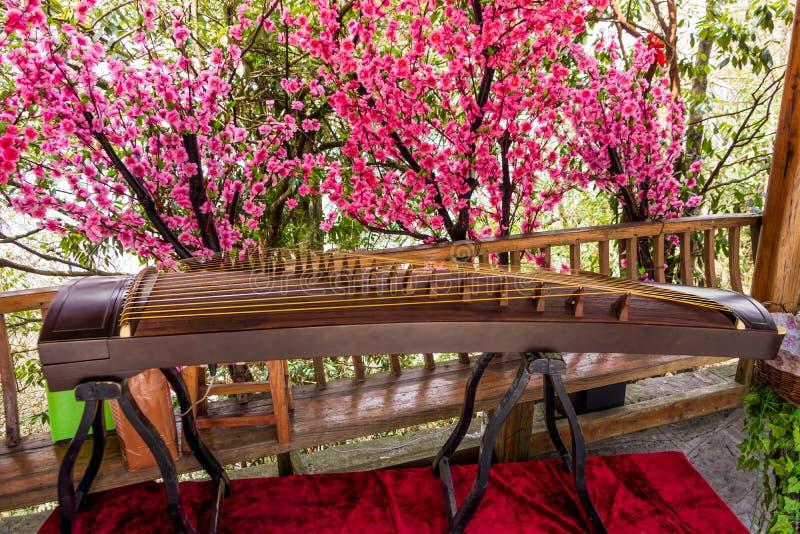 Strumento di Guzheng sui precedenti di bei fiori del fiore È uno strumento classico cinese antico fotografia stock libera da diritti