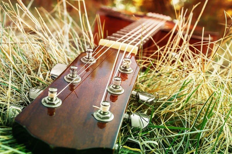Strumento musicale messo insieme in natura Canzoni del gioco fotografia stock libera da diritti