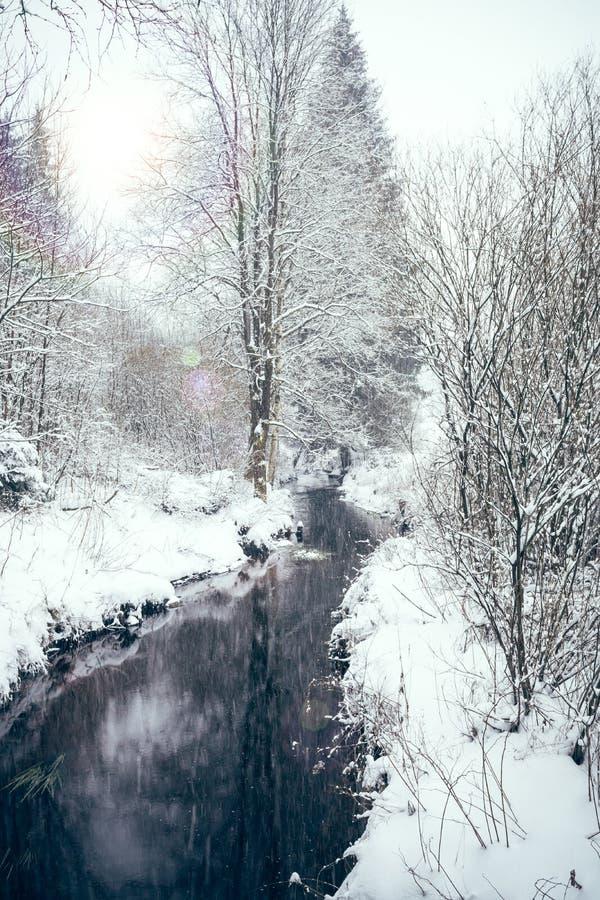 Strumień w zima krajobrazie fotografia royalty free