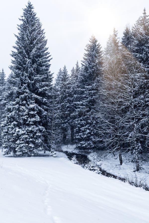 Strumień w zima krajobrazie zdjęcie stock
