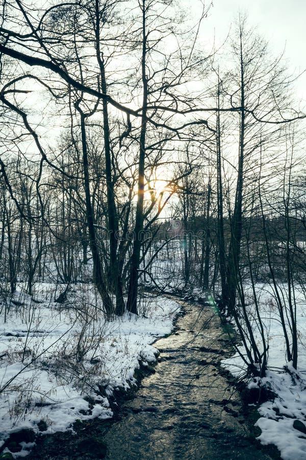 Strumień w zima krajobrazie zdjęcia stock