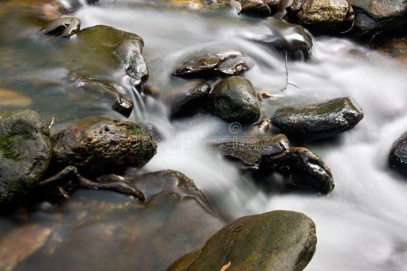 strumień wody bieżącej zdjęcie royalty free