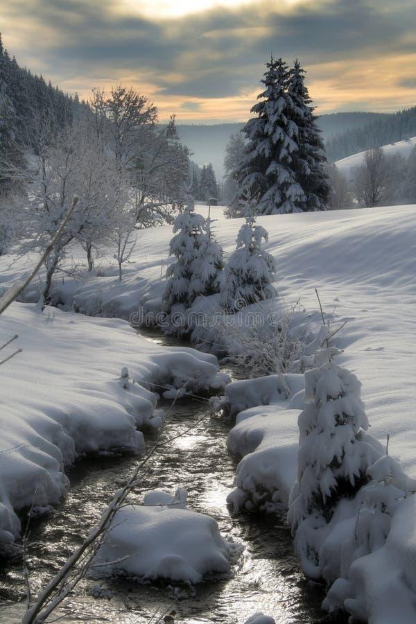 strumień zima obrazy royalty free