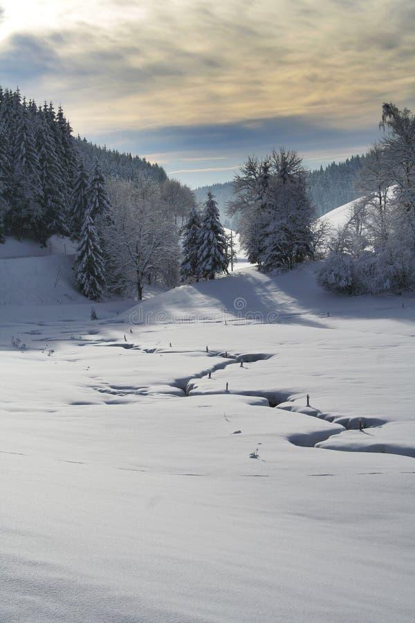 strumień zima zdjęcia stock
