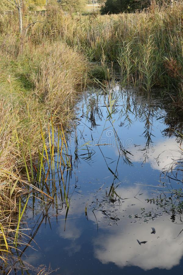 Clouds reflections at Strumpshaw Fen. Strumpshaw Fen is a RSPB bird reserve on the River Yare near Norwich, Norfolk royalty free stock photo