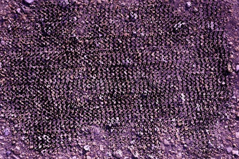 Struttura al suolo ultra porpora di lerciume, superficie della sabbia, fondo di pietra, buon per l'elemento di progettazione immagine stock