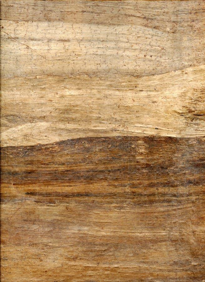 Struttura antica del papiro immagini stock