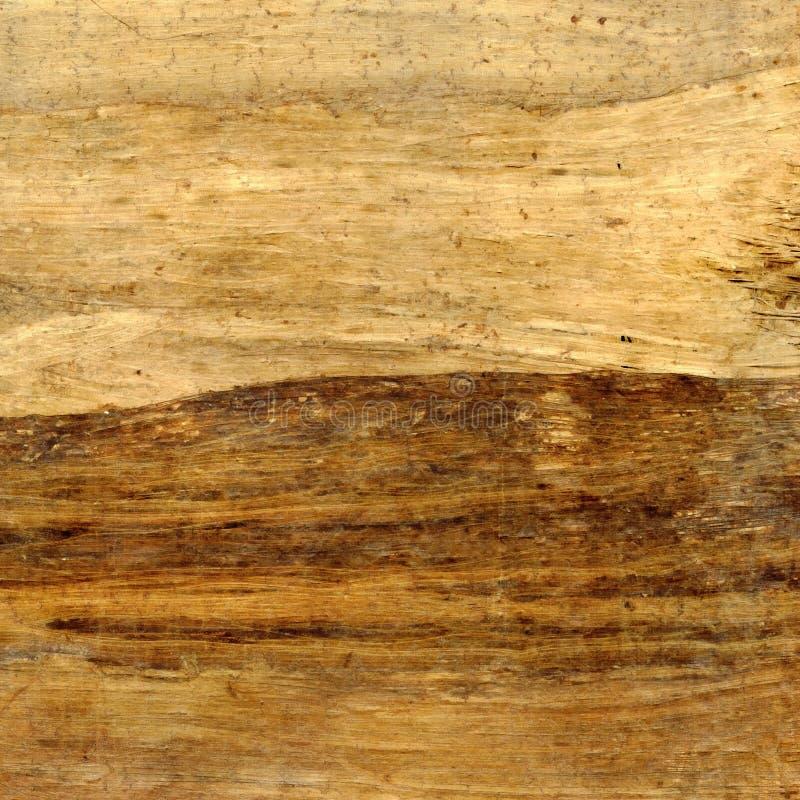 Struttura antica del papiro a priorità bassa immagine stock libera da diritti