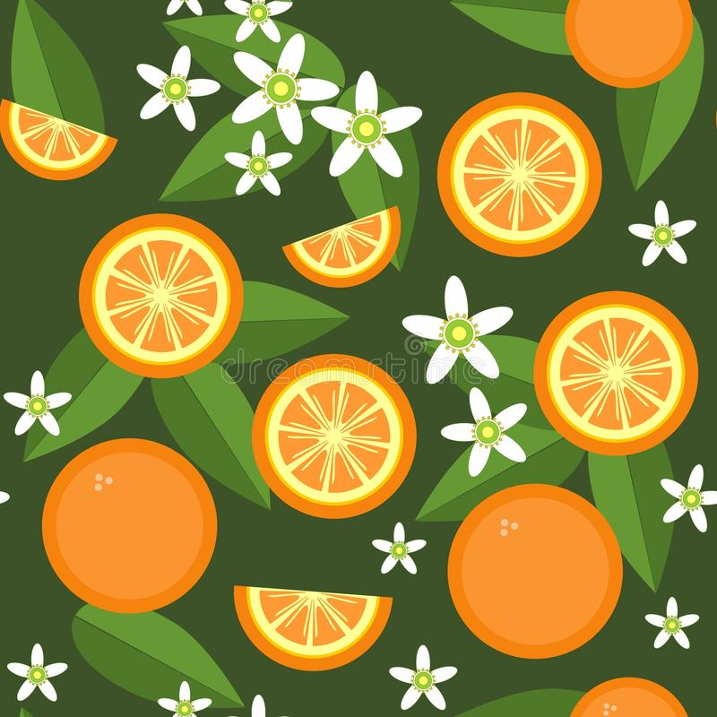 Struttura arancio senza cuciture 545 dei fiori e della frutta illustrazione vettoriale