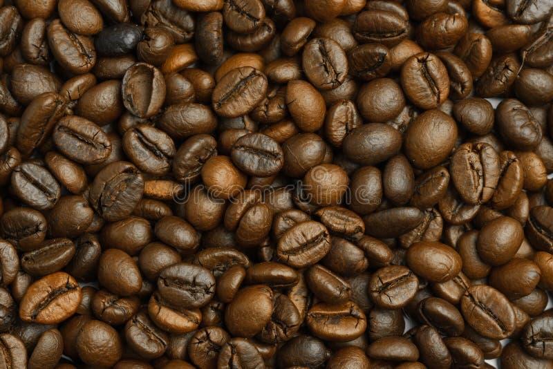 Struttura arrostita dei chicchi di caffè fotografia stock