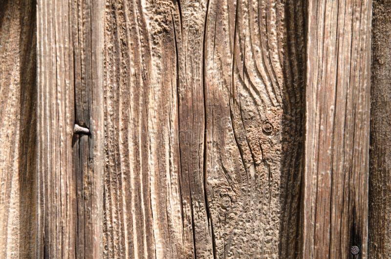 Struttura, bello bordo di legno con un chiodo fotografie stock libere da diritti