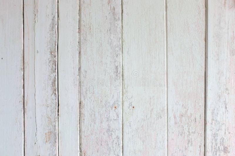 Struttura bianca del fondo del foglio di legno fotografia stock libera da diritti