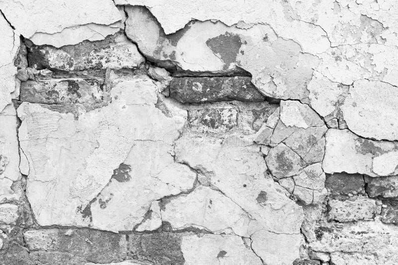 Struttura bianca del muro di mattoni di lerciume immagine stock libera da diritti