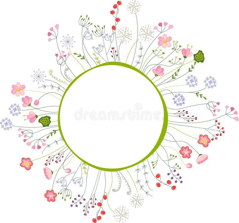 Struttura in bianco con differenti fiori ed erbe illustrazione di stock