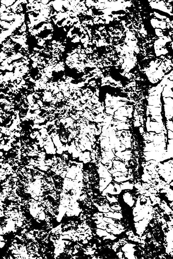 Struttura in bianco e nero afflitta di vettore di lerciume di semitono - vecchio fondo di legno di struttura della corteccia con  illustrazione vettoriale
