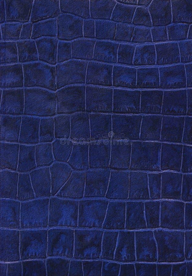 Struttura blu dell'imitazione del cuoio del rettile immagini stock libere da diritti