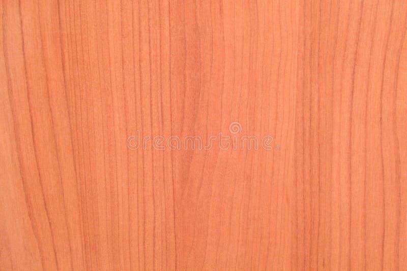 Download Struttura Boscosa Del Brown Fotografia Stock - Immagine di acero, effetto: 3141500