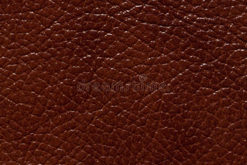 Struttura brillante del cuoio di marrone di contrasto Foto di alta risoluzione immagine stock libera da diritti