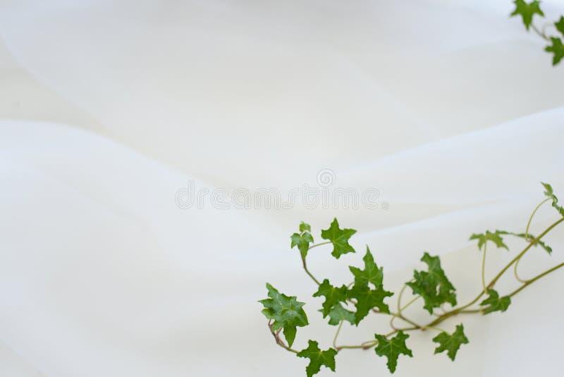 Struttura chiffona morbida bianca fotografie stock libere da diritti