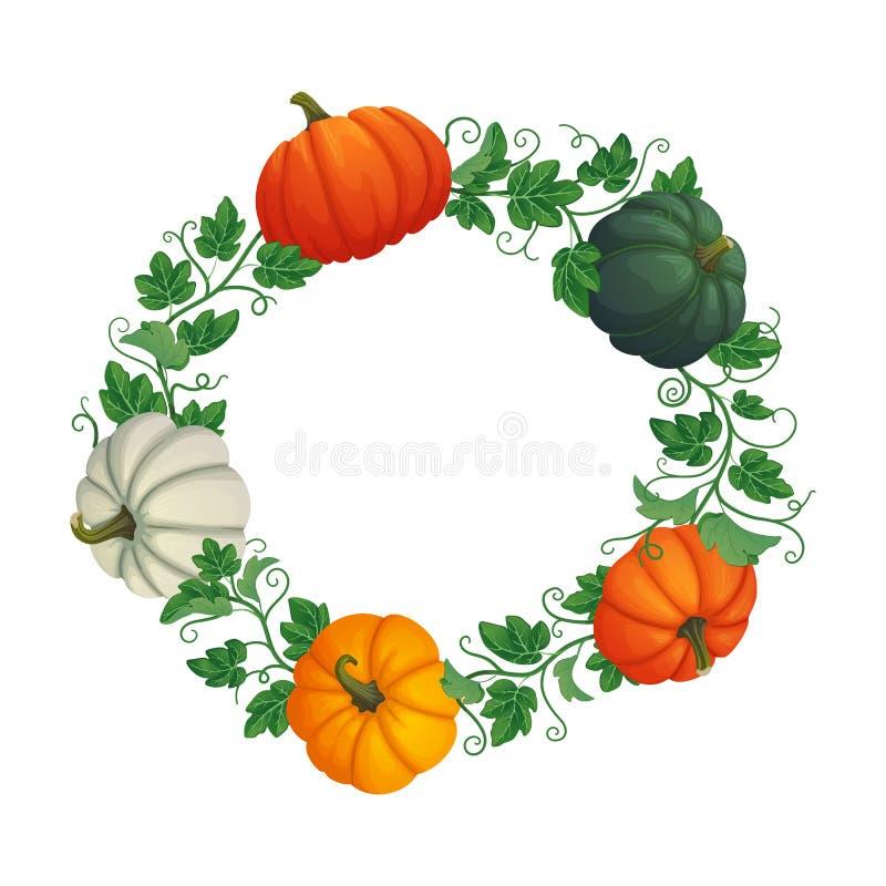 Struttura circolare di autunno con le zucche multicolori con le viti e le foglie royalty illustrazione gratis