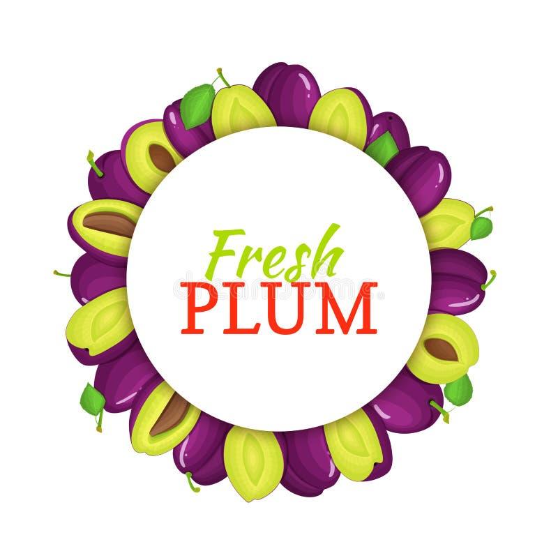 Struttura colorata rotonda composta di frutta deliziosa della prugna Illustrazione della carta di vettore cerchio Frutti freschi  illustrazione di stock