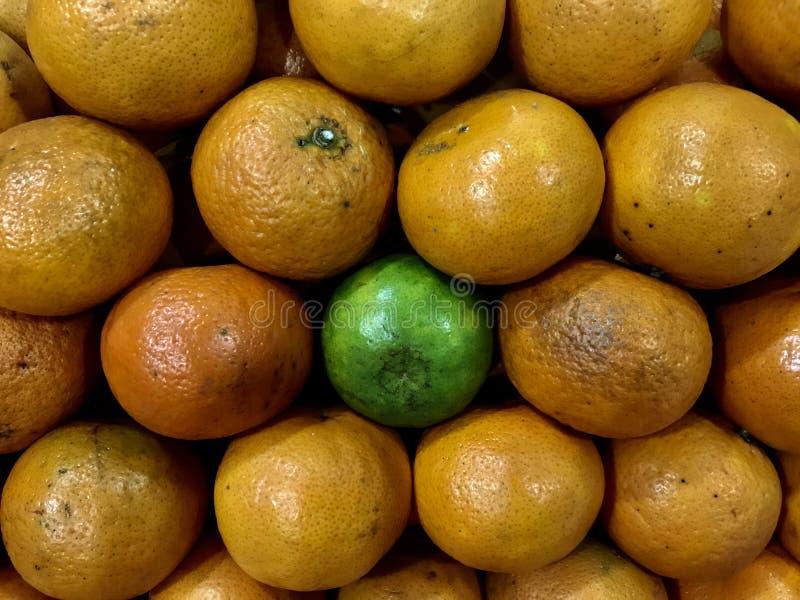 Struttura completa del mandarino organico fresco fotografia stock