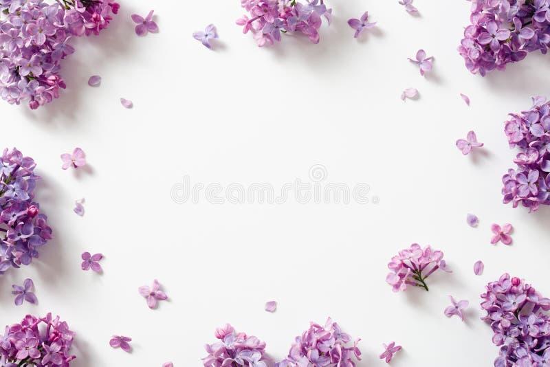 Struttura decorativa di bei fiori lilla porpora fotografie stock libere da diritti