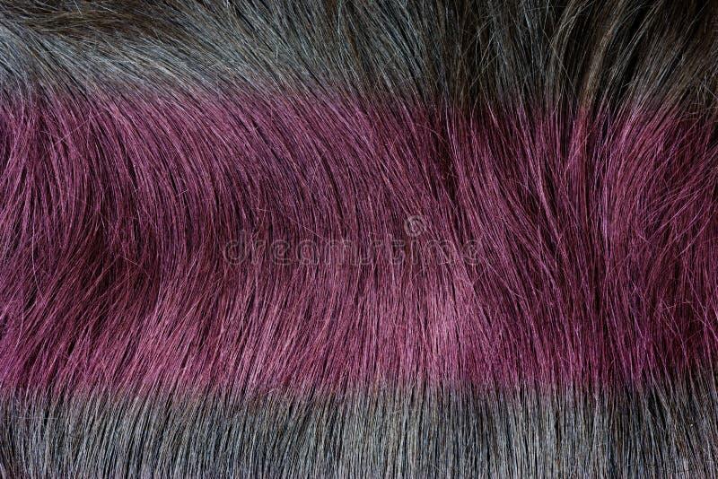 Struttura dei capelli di colore rosso come fondo immagine stock libera da diritti