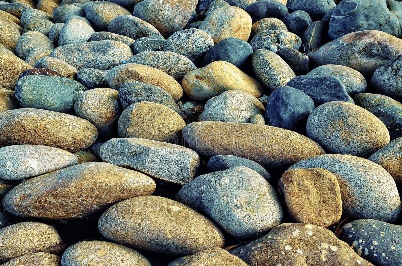 Struttura dei ciottoli di pietra del fiume grigi immagini stock