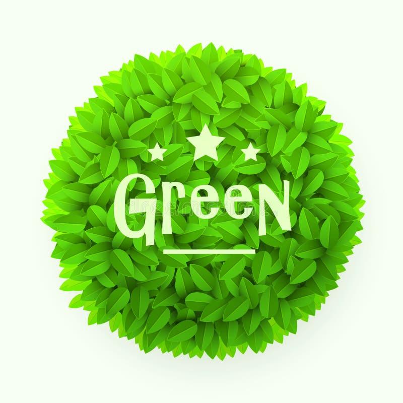 Struttura del cerchio delle foglie verdi isolata su fondo bianco Elemento floreale della decorazione Concetto della sorgente illustrazione di stock