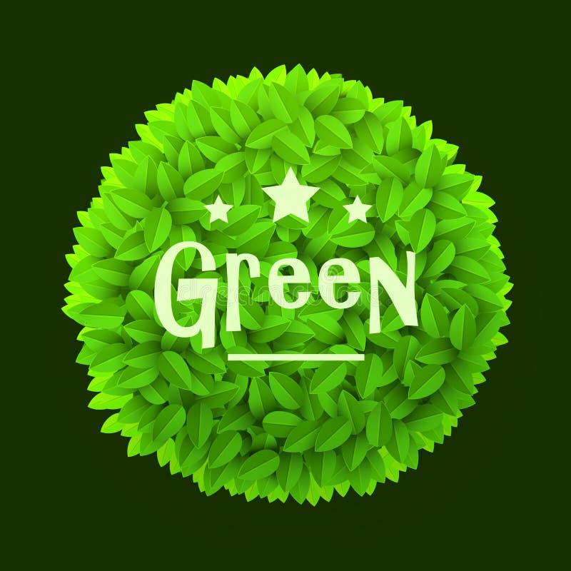 Struttura del cerchio delle foglie verdi isolata su fondo scuro Elemento floreale della decorazione Concetto della sorgente illustrazione vettoriale