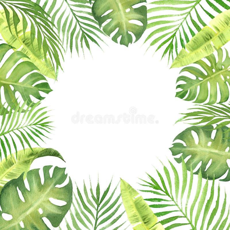Struttura del confine dell'acquerello con le foglie tropicali verdi illustrazione vettoriale