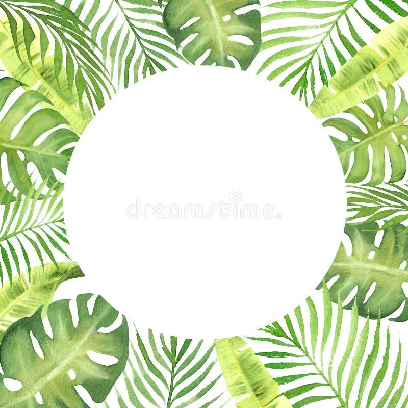 Struttura del confine dell'acquerello con le foglie tropicali verdi royalty illustrazione gratis