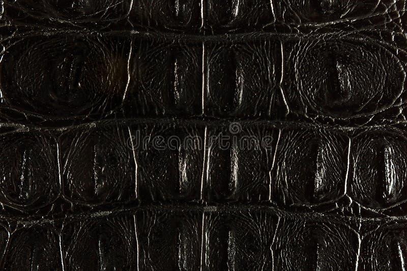 Struttura del cuoio posteriore fotografia stock