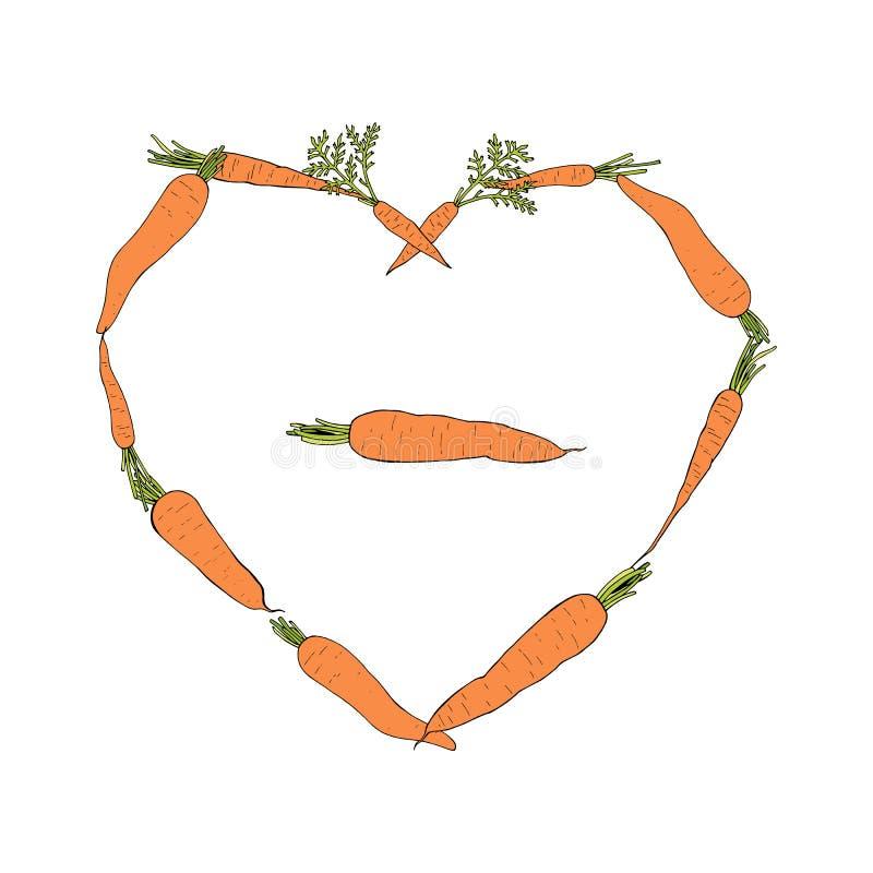 Struttura del cuore con le carote colorate illustrazione vettoriale