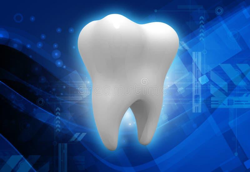 Struttura del dente illustrazione di stock