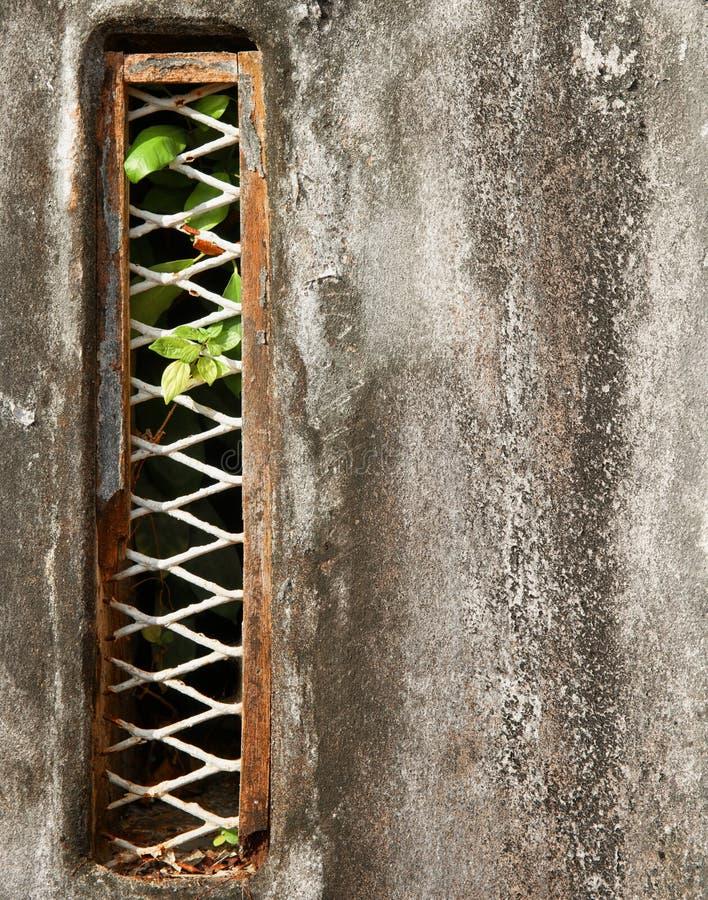 Struttura del fondo della parete di lerciume fotografia stock
