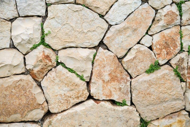 Struttura del fondo della superficie della pietra del calcare con erba verde immagine stock