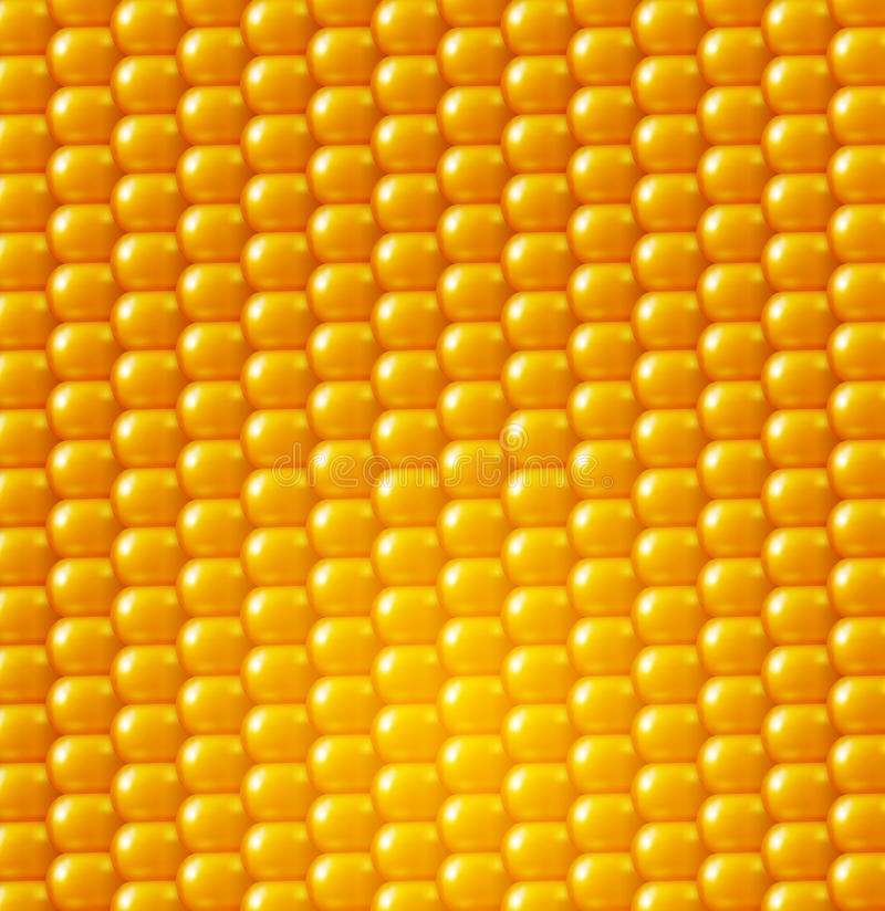 Struttura del fondo di vettore, cereale giallo Elemento di disegno illustrazione vettoriale