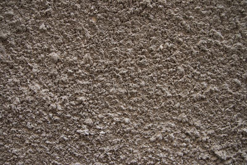 Struttura del gesso dello scarabeo di corteccia sulla parete fotografie stock