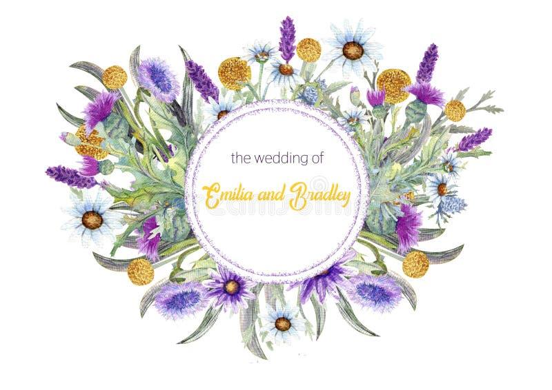 Struttura del giro di nozze dei fiori selvaggi watercolor disposizione dei fiori Progettazione del modello della cartolina d'augu royalty illustrazione gratis