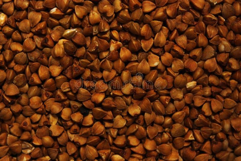 Struttura del grano saraceno immagine stock libera da diritti
