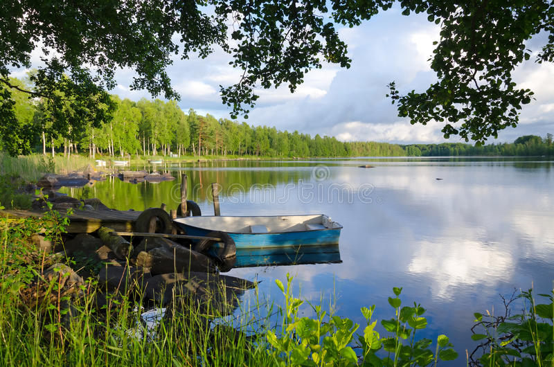 Struttura del lago summer immagini stock