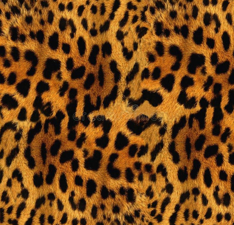 Struttura del leopardo immagini stock libere da diritti