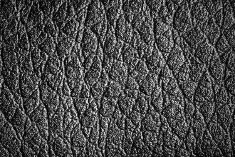 Struttura del primo piano di colore di cuoio di bianco del nero del jecket fotografia stock libera da diritti