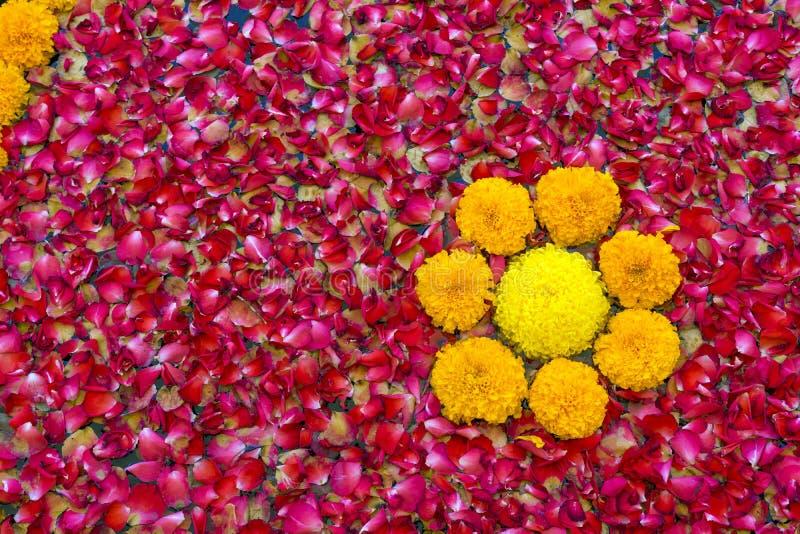 Struttura del rosa sparso e del fondo rosso dei fiori immagini stock libere da diritti